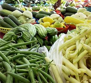 CSA-vegetables