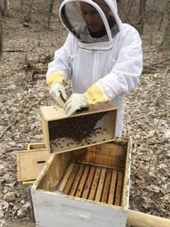 Beekeeper-PatrickNorby